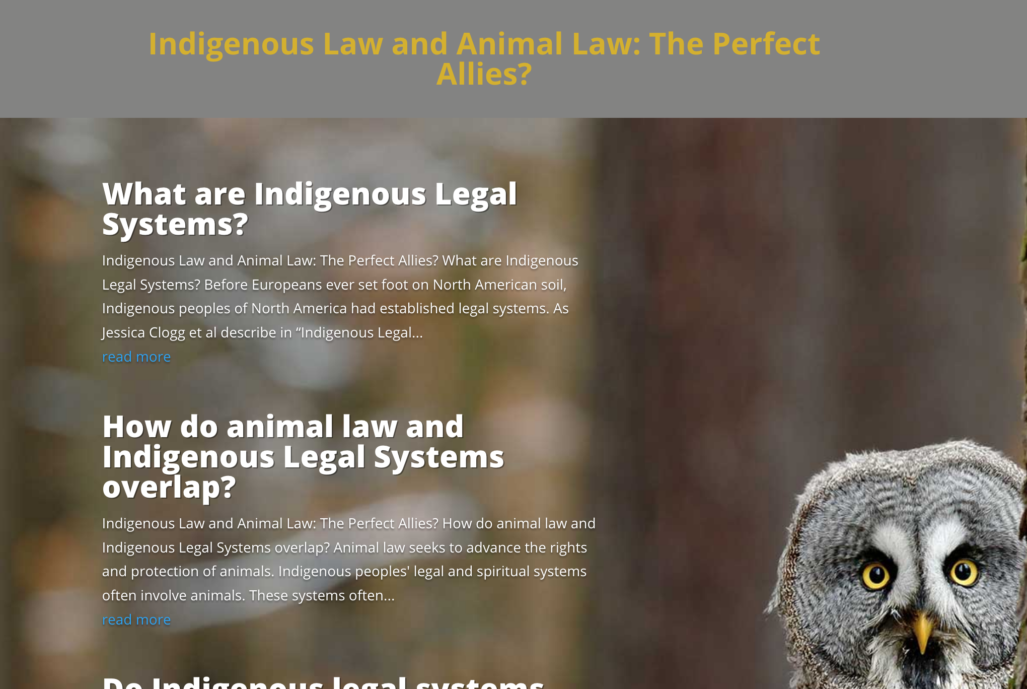 Animal Law and Indigenous Law: The Perfect Allies?